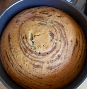 Melanie's Food Adventures – Zebra Cake - Cooling In The Cake tin
