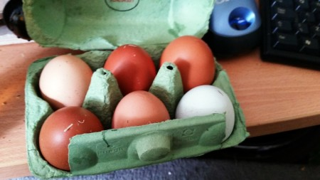 6 Nations of Food – Eggs from Gemma's Chickens